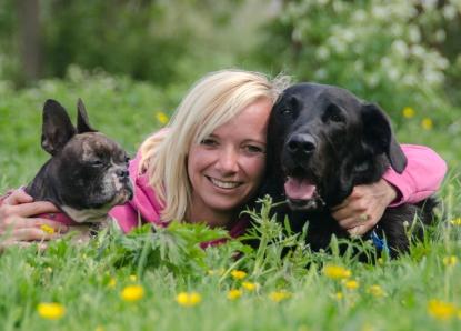 Honden in asiel rotterdam
